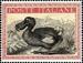 Obrázek - Darwinova cena