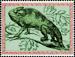 Obrázek - Chameleon